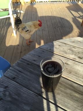 Galveston Brewery Pet