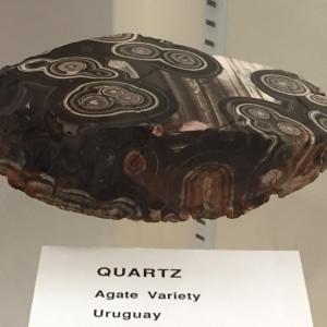 El Paso UTEP Museum Agate