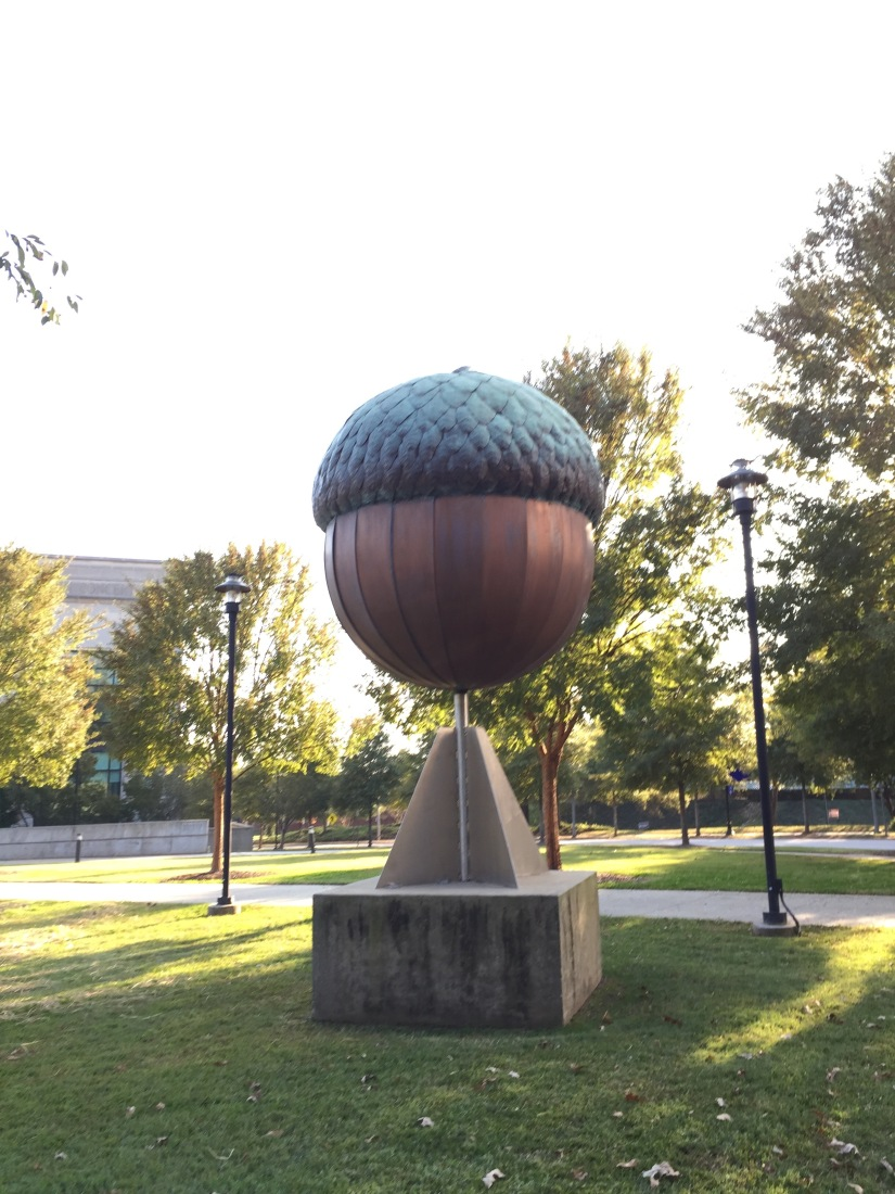 Raleigh, North Carolina  10/29 – 11/05